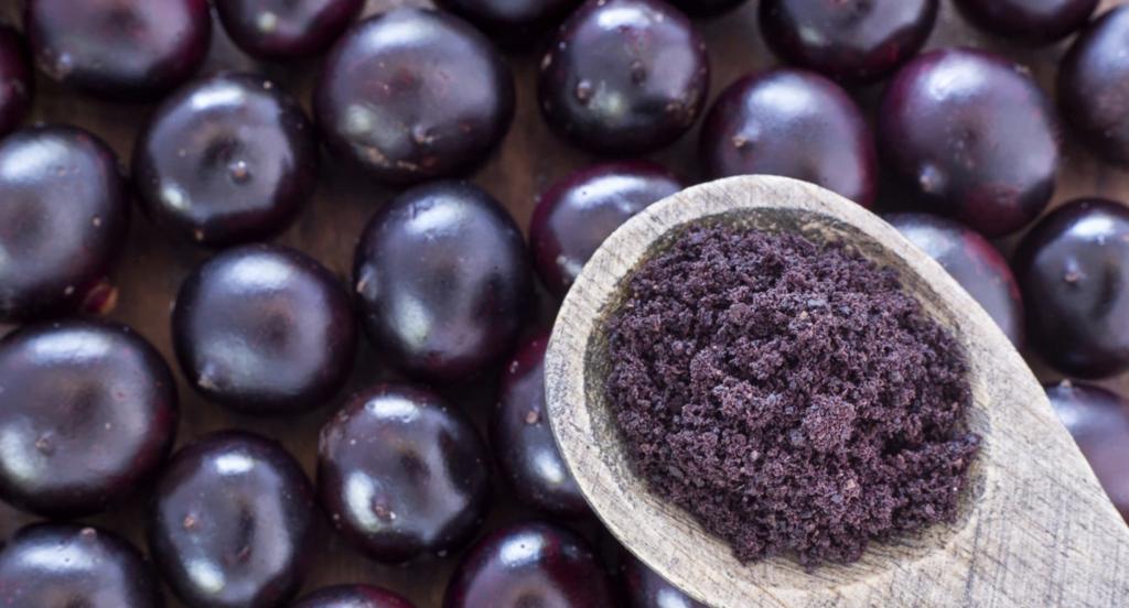 Acai Berry Origins (Photo of Berry)